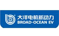 铜心源合作伙伴-大洋电机